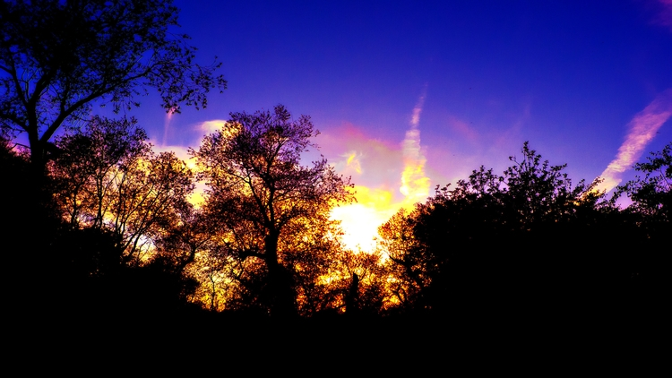 Sunset Moonrise - sunset, photography - malcolmcrowther   ello