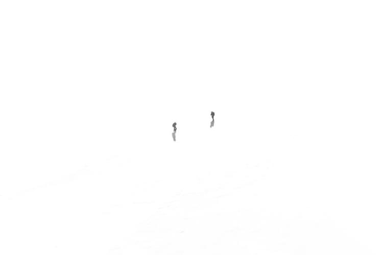 walk - blackandwhitephotography - daphot | ello