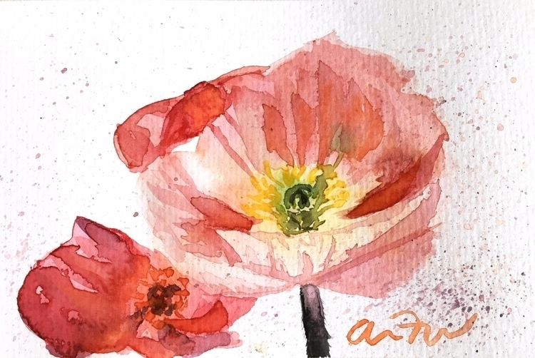 Watercolor poppies 4 6 original - amandajfrench | ello