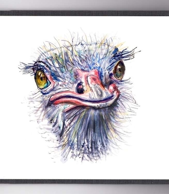 Piss Ostrich - watercolor, watercolour - doodlewash   ello