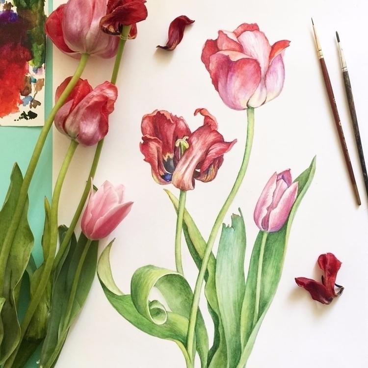 Tulips! competition - ботанический_баттл - evesolar | ello