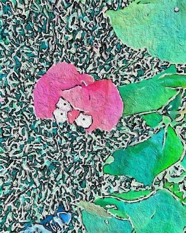 Pink Flower Mini White Flowers  - mikefl99 | ello