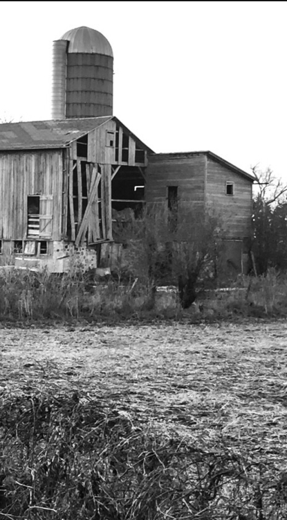 Abandoned Barn - exinerartstudio | ello