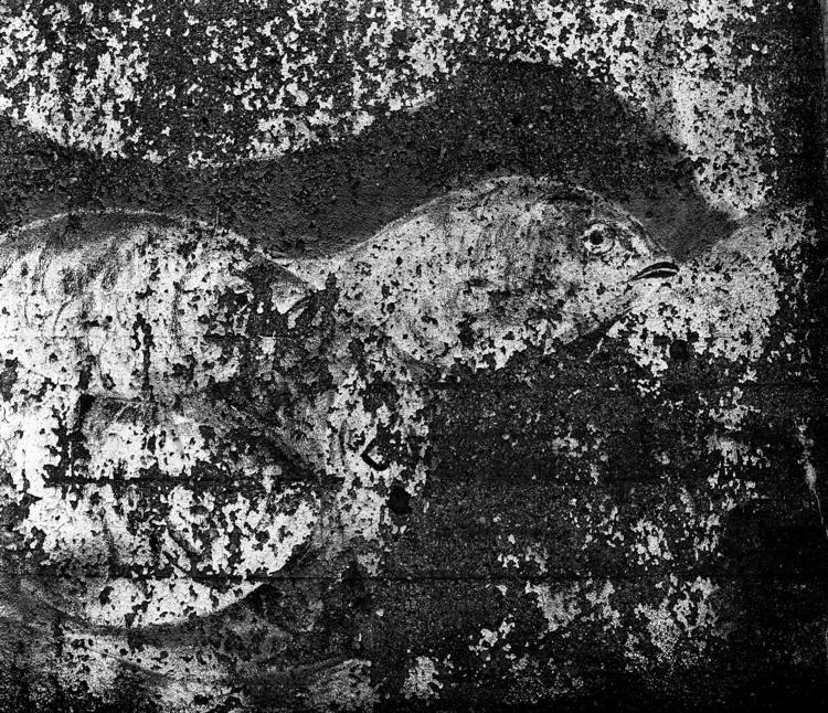Lost artwork Nr.1 forms beginni - junwin | ello