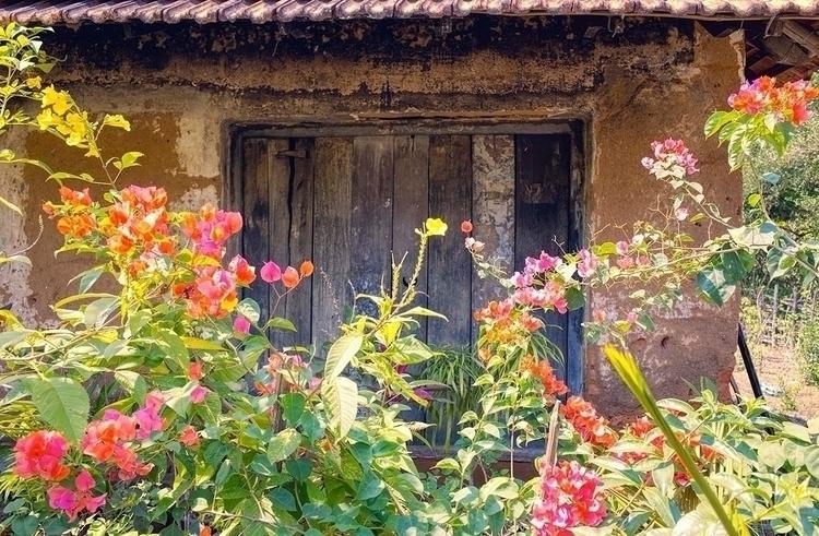 Travels India, Hariharapura, Ka - jasmac | ello