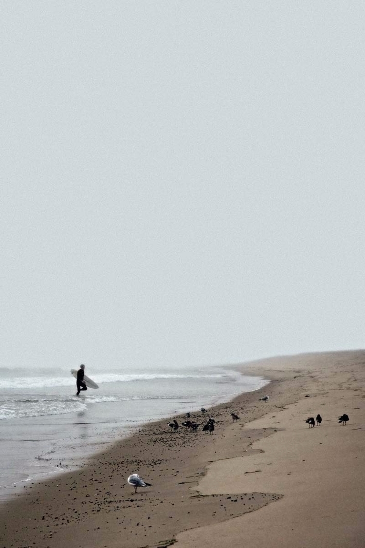 lone surfer exits water foggy C - brookeryan | ello