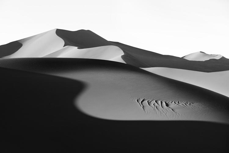 Dunes: Landscapes Evolving mini - barenbrug | ello