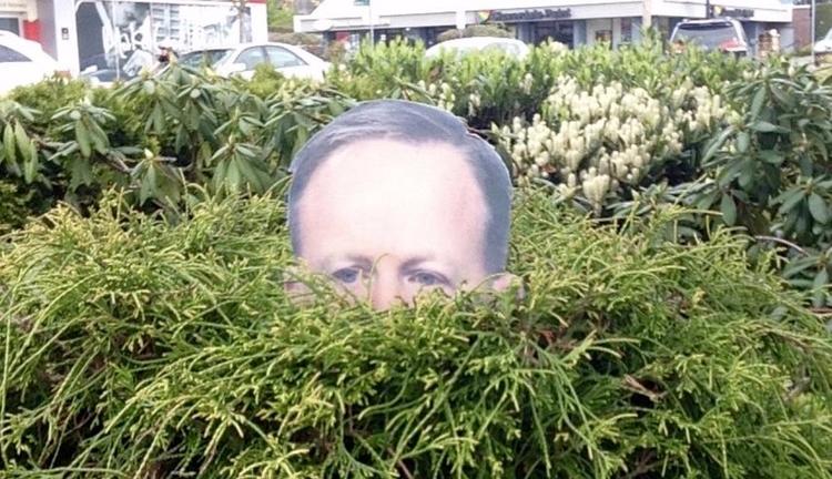 Garden Spicer add press secreta - bonniegrrl | ello