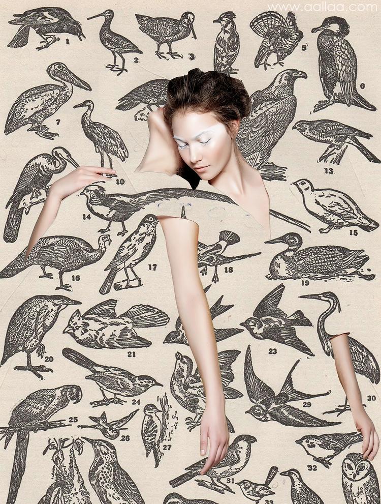 collage, fashioncollage - aallaa | ello