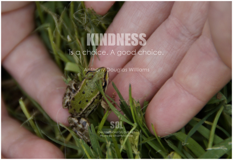 picture quotes Kindness choice - symphonyoflove | ello