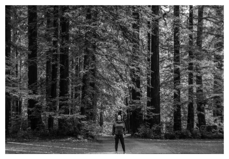 Samuel Taylor State Park, CA - guillermoalvarez | ello