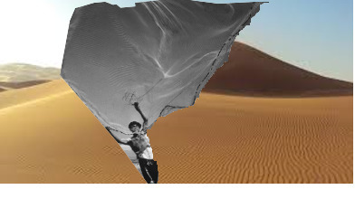Words fishing digital collage M - rainermaria | ello