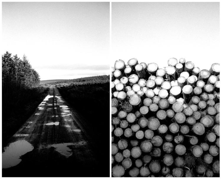 Path - Leica, landscape, photography - jmo   ello