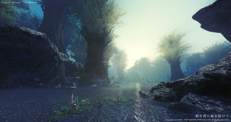 朝を背に森を抜けて 黒衣森:中央森林 - 鏡池 より - FF14 - flcvs | ello