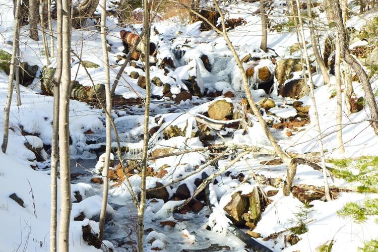 Adirondack stream NY - dalespiry | ello