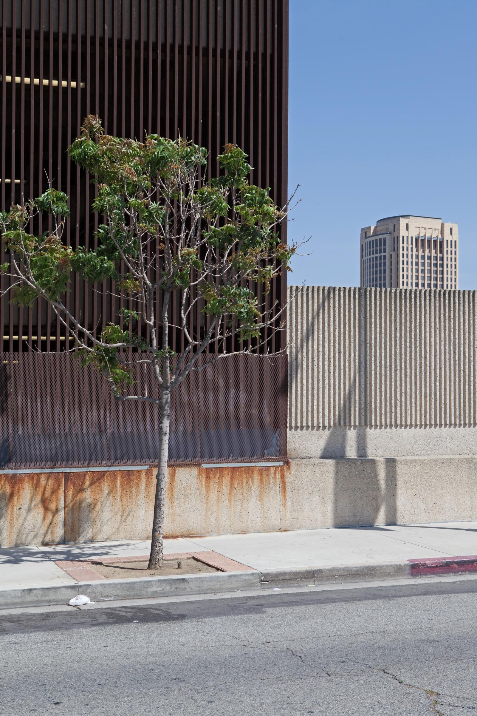 Tree, Parking Structure, Metro  - odouglas | ello
