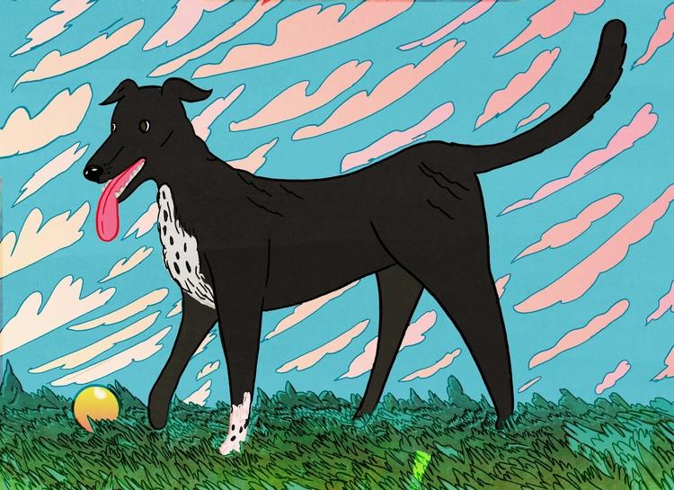 dog - illustration, drawing, design - dylansgriffith | ello