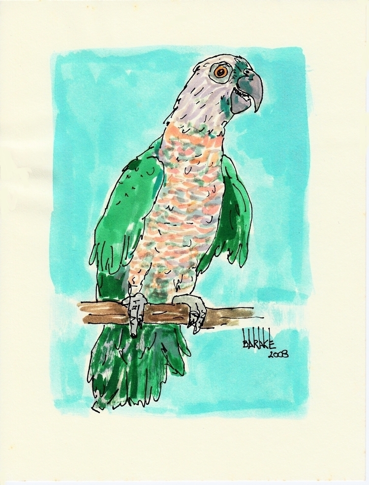 PARROT - illustration, ink, parrot - barakesculptor | ello