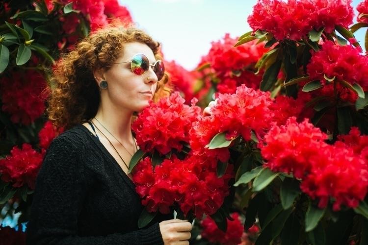 angle, rhododendron bush parkin - laneyluv__ | ello