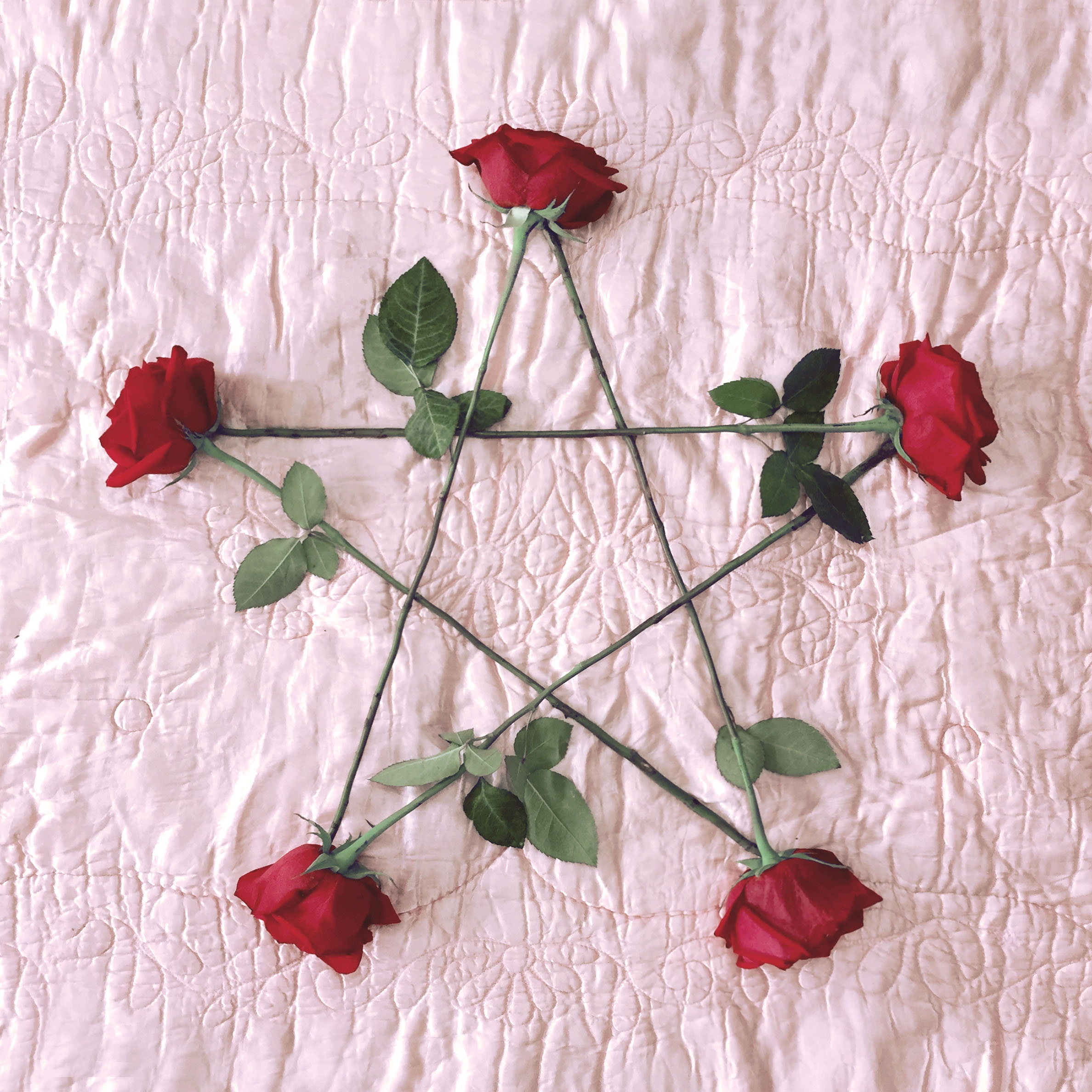 contemporary, aesthetic, occult - mommatried | ello