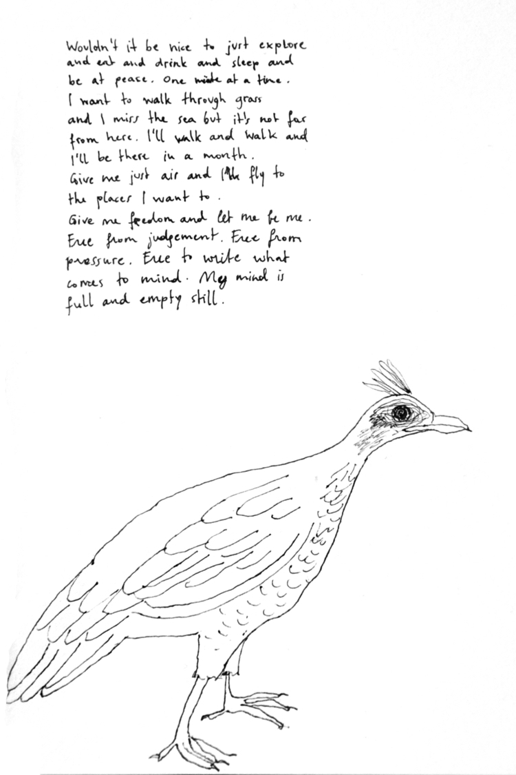 Bird, 2017 - bird, art, #drawing - juliaromana | ello