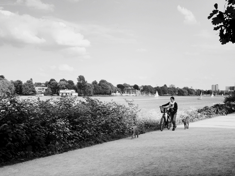 Walk Visit portfolio - photography - mobilshots | ello