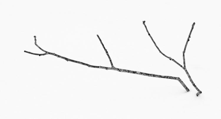 stick snow  - monochrome, zen, textures - docdenny | ello