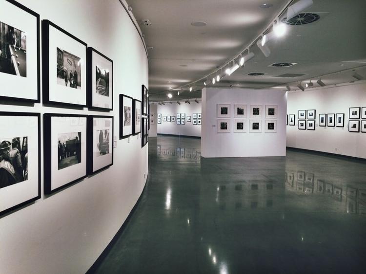 gallery - lizzieli | ello