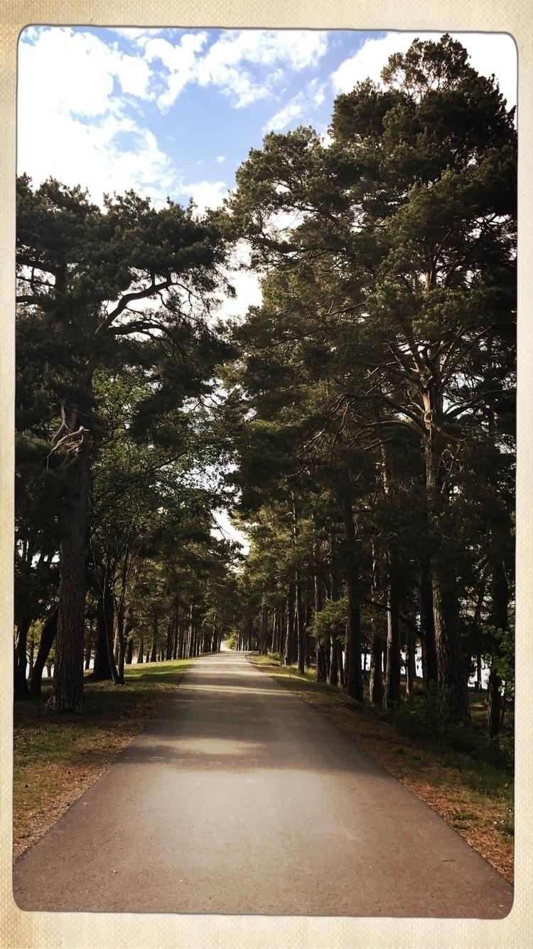 road ends - run, walk, move, forrest - yogiwod   ello