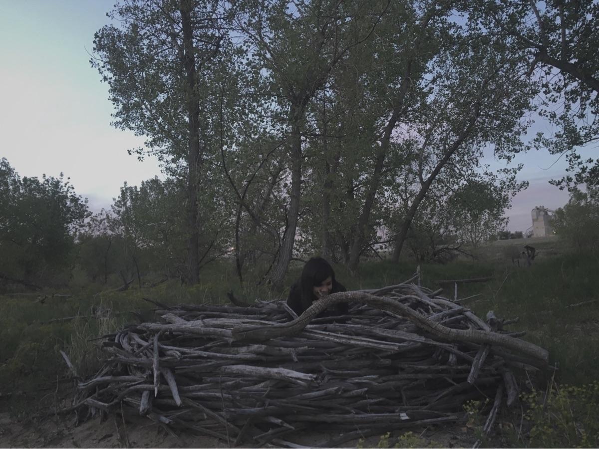 Massive birds nest woods! Ello - earthandbone | ello