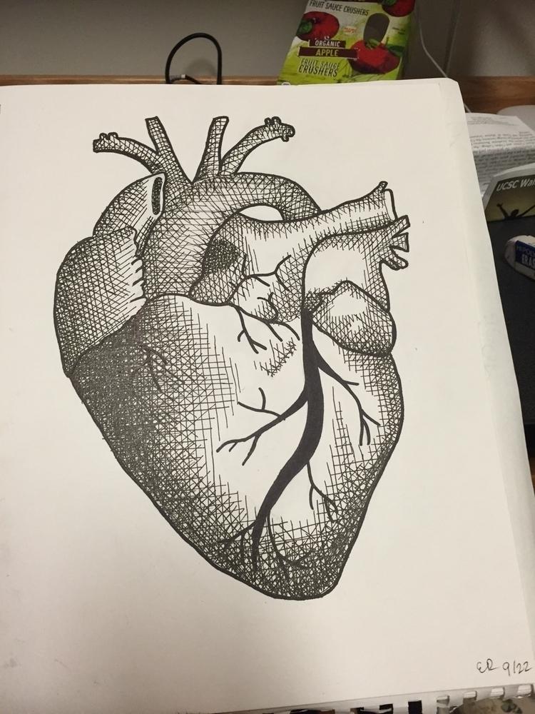 cross hatched anatomical heart - deadoaks | ello