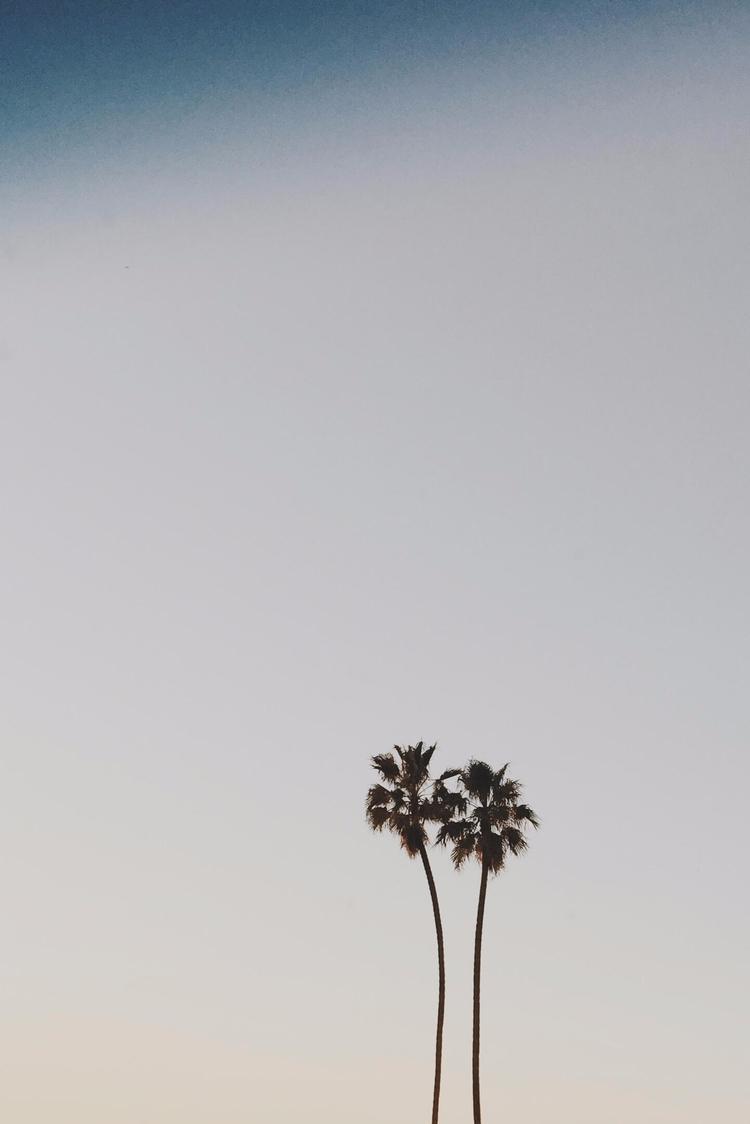 Los Angeles - la, losangeles, westocast - toriamia | ello