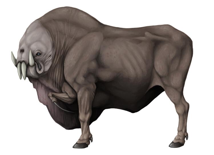 [Text Field Guide Beasts Illusa - hannahorca | ello