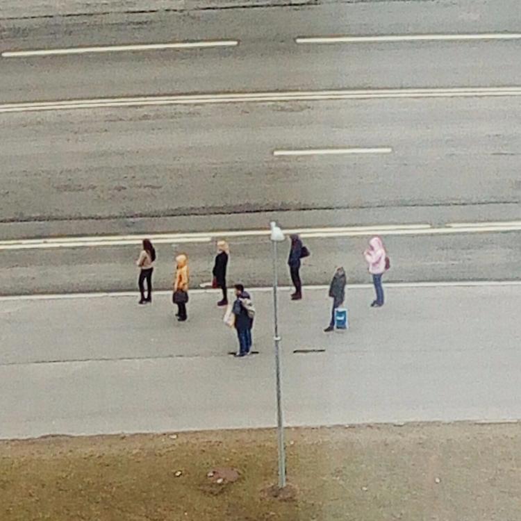 bus stop grid - people, miracle - danyadolotov | ello