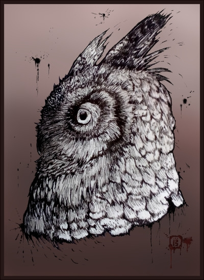 Horned owl - sketchbook, malthuswolf - malthus_wolf | ello