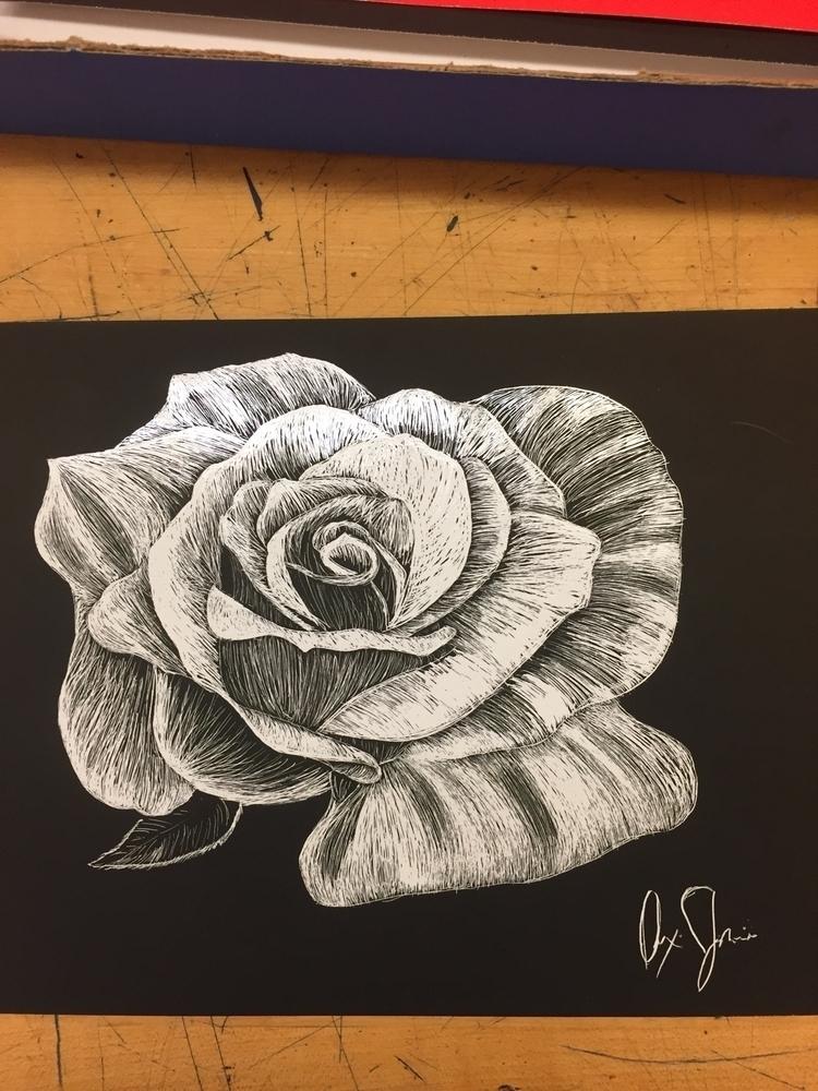 scratchboard rose email info: a - alexiajames | ello