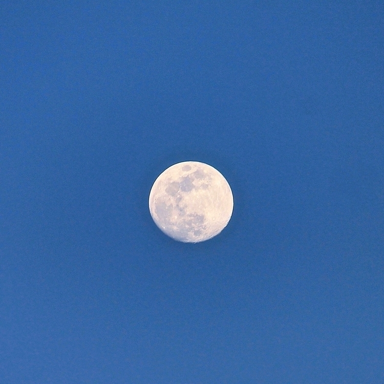 Luna love  - moon, fullmoon, naturephotography - mermaidtearshawaii | ello