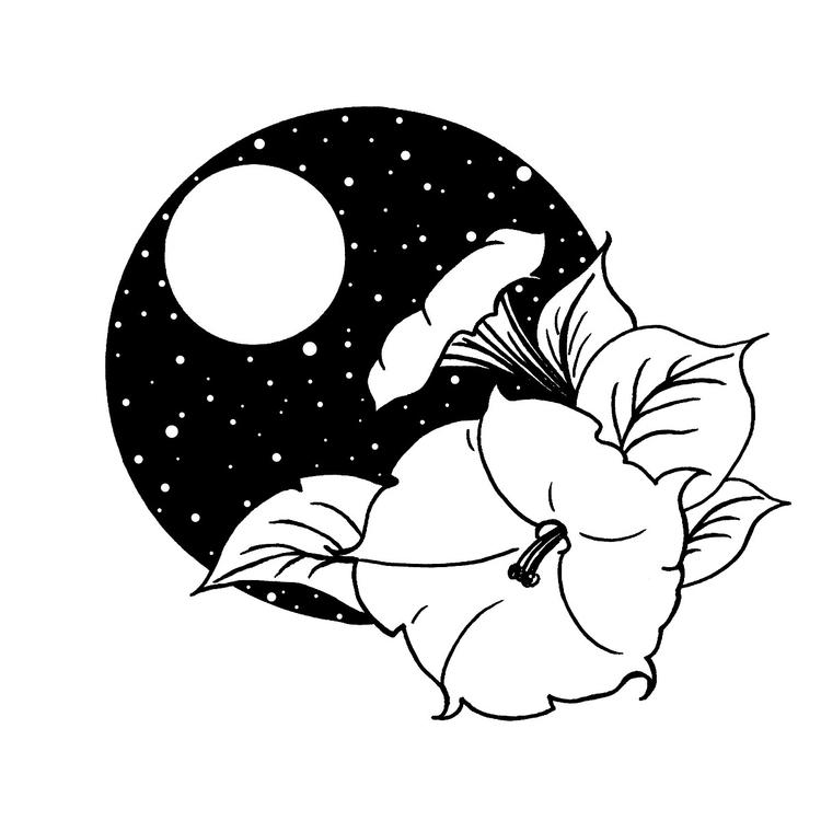 Moonflower magic ♡ - moonflower - moonflux_studio | ello