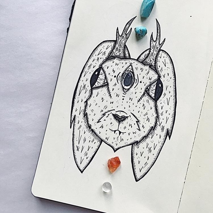 favourite  - jackalope, art, artist - mikaelaelle | ello