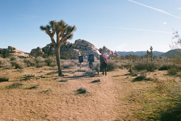 Climbing Joshua Tree Photo Matt - fieldmag | ello