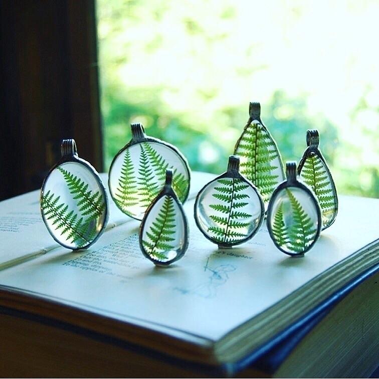 fern, woodland, terrarium, glass - verymeadow   ello