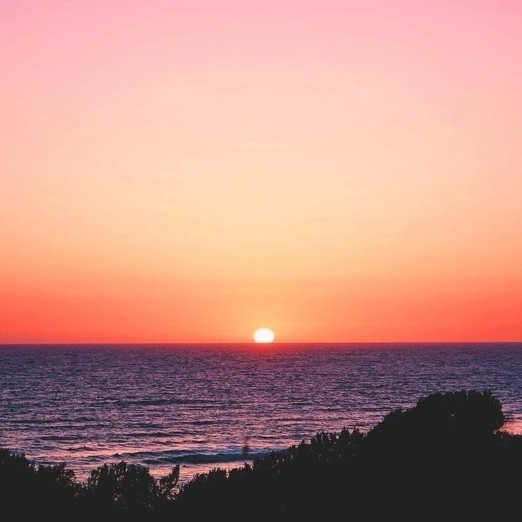Sunset lover - sunsets, sunset, californialove - onplanetpalm | ello
