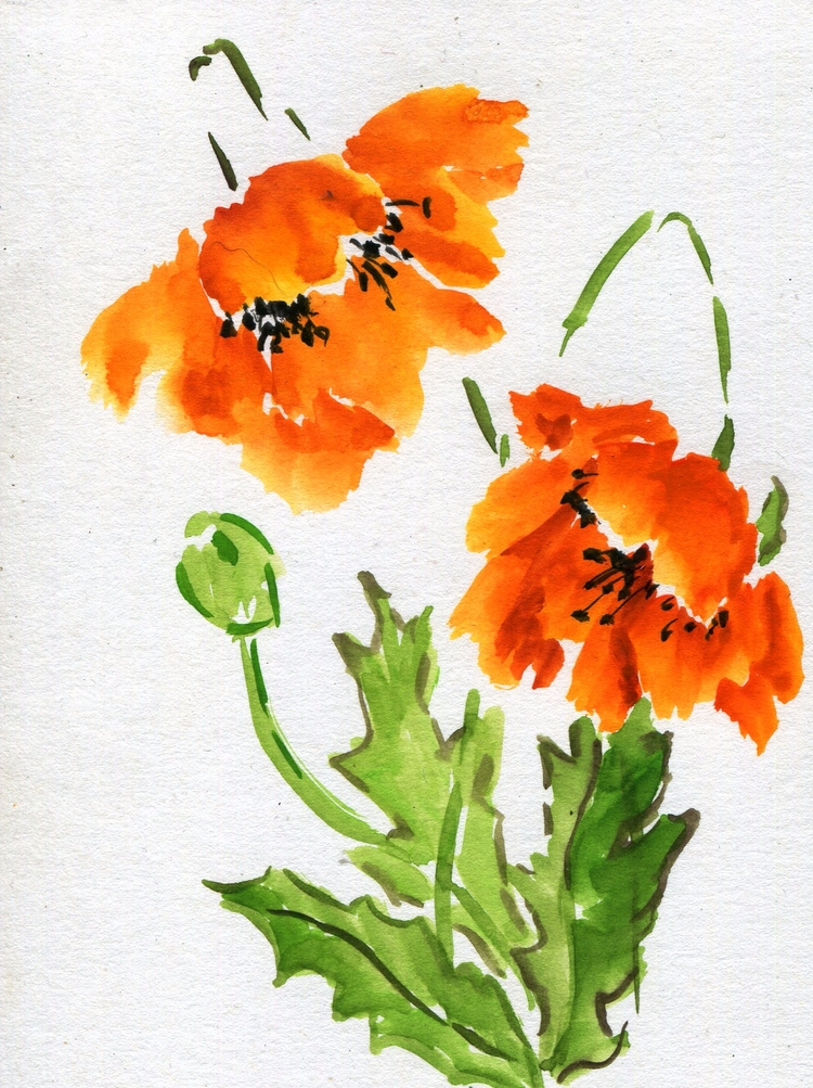 Watercolor Chinese Ink Bristol  - havekat | ello