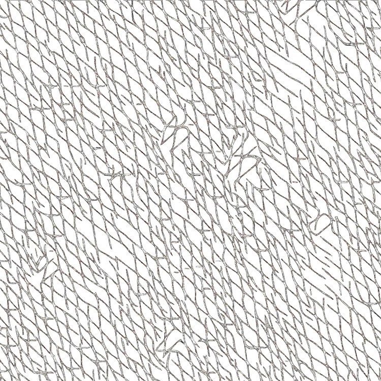 Vectored original drawing geome - charles_3_1416 | ello