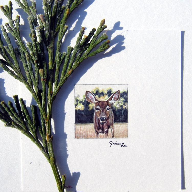 deer :) 1×1 watercolor painting - paintingsforhummingbirds | ello