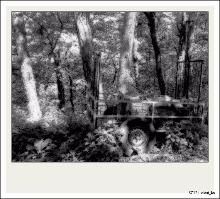 19:59 Tree Trailer (Magic Wood - eleni_be | ello