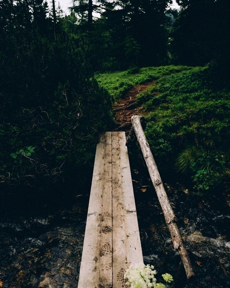 continue fall - adventure, photography - lavisuals | ello