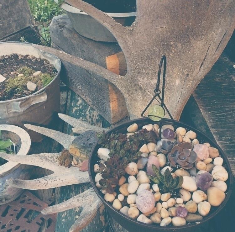 garden creation season - ellescriv | ello