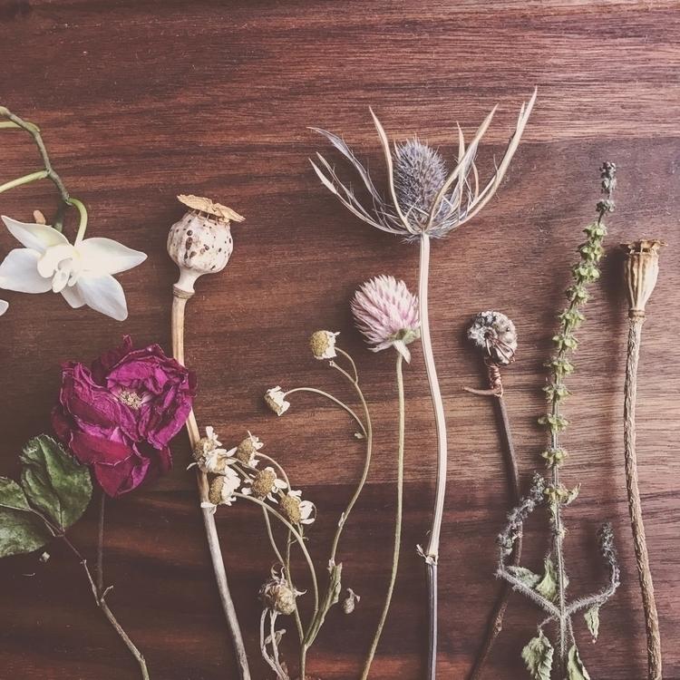flowerart - ritual_botanica | ello
