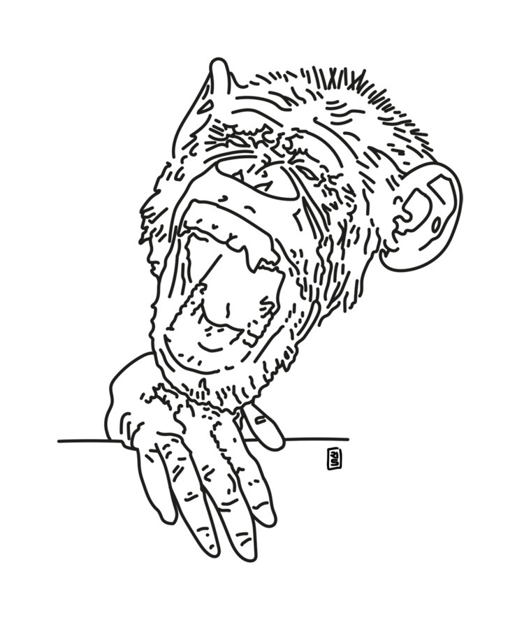 Ape - illustration, drawing, art - rivasinge | ello
